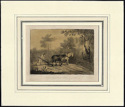 Antique Print-WORKHORSE-PLOUGH-FIELD-FARMER-Gainsborough-Laporte-1819