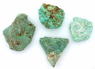46.5 Grams Sonoran Blue Green Turquoise Slice Slab Cabochon Cab Rough Gem TSS26