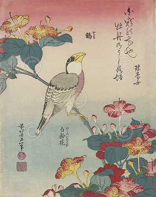 Hawfinch and Marvel-of-Peru - Katsushika Hokusai Art Print Japanese Poster 11x14
