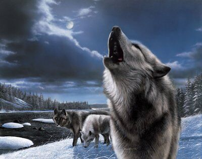 WILDLIFE ART PRINT - Howling Wolf by Kevin Daniel Wolves Poster 14x11