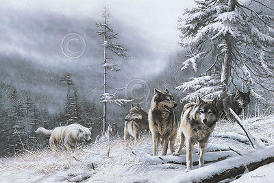 WILDLIFE ART PRINT Search for Survival by Kevin Daniel Wolf Wolves Poster 56x38