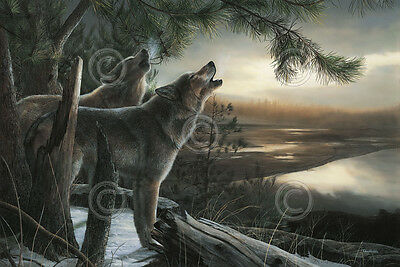 WILDLIFE ART PRINT - Wild Ones by Kevin Daniel Wolf Howl Wolves Poster 19x13
