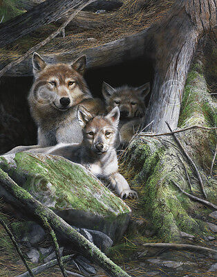 WILDLIFE ART PRINT - Mother's Pride by Kevin Daniel Wolf Wolves Poster 19x13