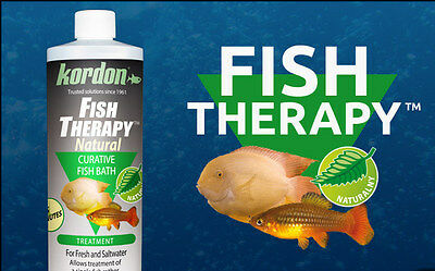 KORDON*Fish Therapy118,473 ml*Natural Disease Treatment for Fresh and Saltwater
