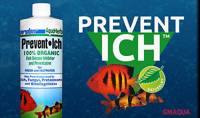 KORDON* Prevent Ich 118,473 ml