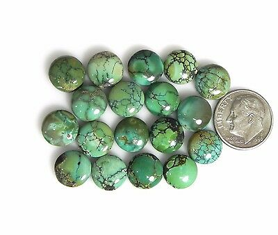 Natural Nevada Turquoise round cabochons cabs Gemstones beautiful gems nv030