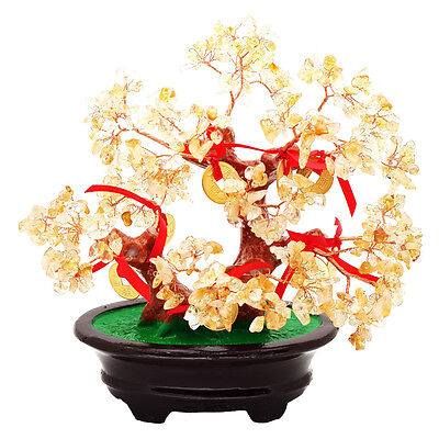 Feng Shui Natural Citrine Crystal Gem Tree with 8 Gold Coins