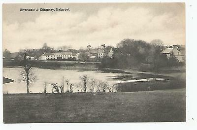 irish postcard ireland cavan belturbet