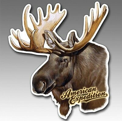 Wildlife Auto/Car/Truck MAGNET-MOOSE-by American Expedition-Made in USA