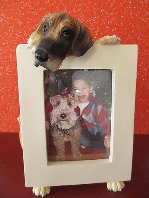 Great Dane ~Uncropped ~ Picture Frame  #51