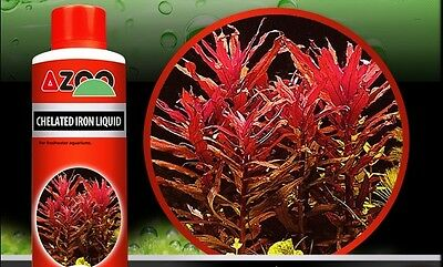 AZOO CHELATED IRON  *For aquatic plants, reef aquariums and ponds *120,250,500ml