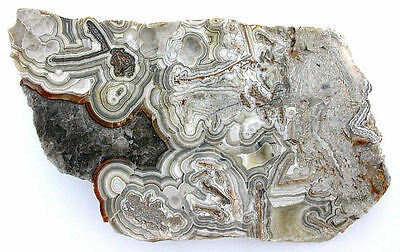 251.6 Grams Arizona Banded Crazy Lace Agate Slab Cab Cabochon Gem Rough US1