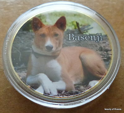 Dog Basenji    24K GOLD  PLATED 40 mm   COIN