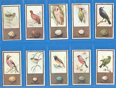 British Birds And Their Eggs.10 Cigarette Cards By Godfrey Phillips In 1936