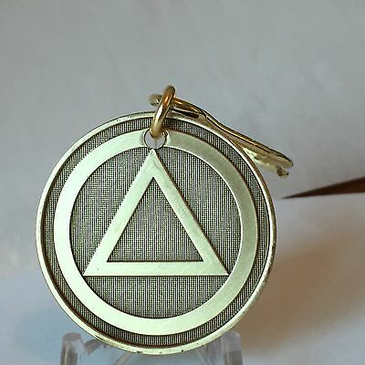 AA Circle Triangle Medallion Key Chain Pain Necessary Suffering Optional Keychai