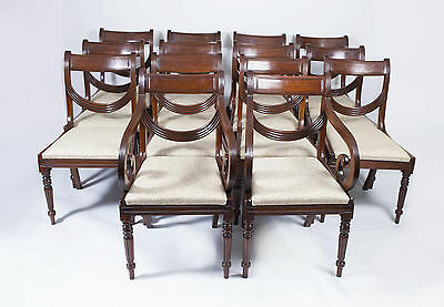 Set 14 Regency Style Mahogany Dining Chairs Swag Back