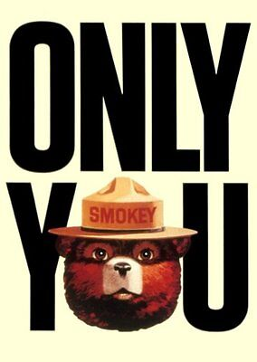 Smokey The Bear Poster Only You Forest Fires 11x17 Mini Poster (28cm x43cm)