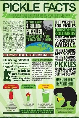 PICKLE POSTER ~ FACTS 24x36 Pickles Cucumber Dill Vegetable Fried Drink Fruit