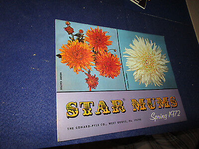 1972 Star Mums Advertising Catalog Conard-Pyle Co. West Grove Pa. Flowers
