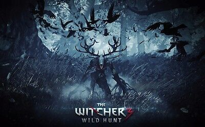"The Witcher 3 Wild Hunt Fabric poster 21"" x 13"" Decor 52"