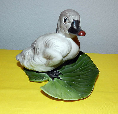 Beautiful Edward M Boehm Porcelain Bird Figurine Cygnet Cygnus Olor Usa Made 400