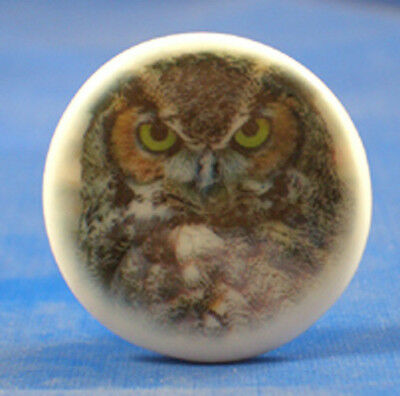 """1""""  Porcelain China  Button --  Great Horned Owl"""