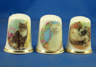 Fine Porcelain China Thimbles - Set Of Three Assorted Cats