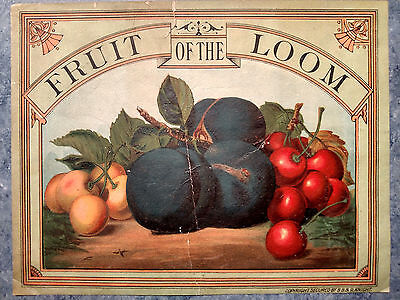 1890s? FRUIT OF THE LOOM ADVERTISMENT SIGN? BOX LABEL?