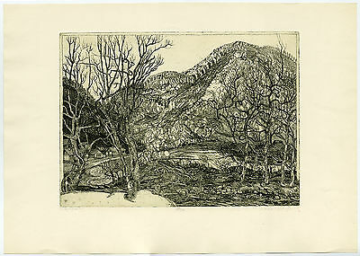 Antique Print-HUNGARIAN MOUNTAIN VILLAGE LANDSCAPE ALONG MOUNTAIN STREAM.-Istal