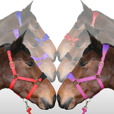 Soft Fleece Padded Adjustable Head Collar Horse Cob Pony - All Sizes & Colours