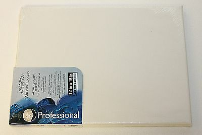 """WINSOR & NEWTON Artist Canvas 12""""x16"""" Stretched Cotton Canvas NEW SEALED"""