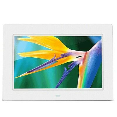 10.1 LCD HD Electronic Digital Photo Frame Picture Photography MP4 Player WHT BF