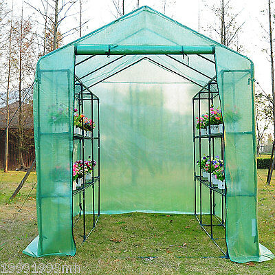 8'x6'x7' Walk In Greenhouse Garden Flower Plant Shed Green House w/ Shelves