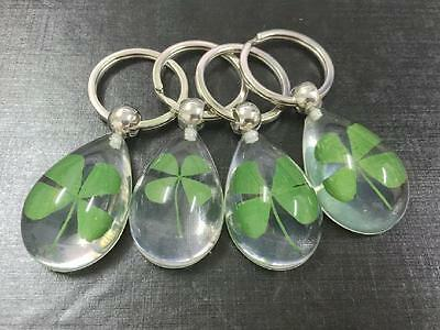 4 PCS specimen jewelry real four leaf clover charming lucid drop style keychain