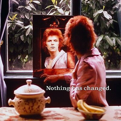 David Bowie - Nothing Has Changed (The Best Of David Bowie) 2 Vinyl Lp Neu