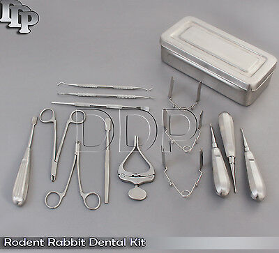 Rodent Rabbit Dental Kit Complete with Box Small Animal Dental Kit DDP-002
