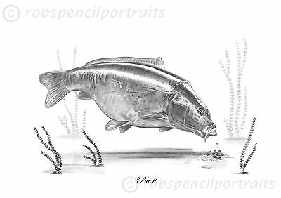 BAZIL Classic Named Carp Series By Robin Woolnough Pencil Drawing Art Print