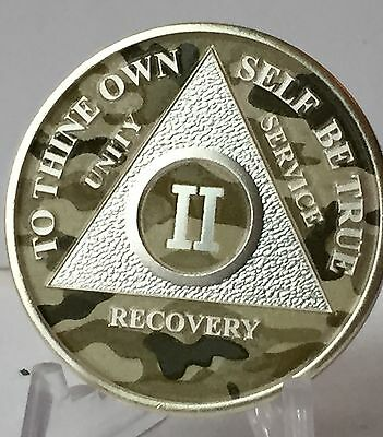 Camo & Silver Plated 2 Year AA Chip Alcoholics Anonymous Medallion Coin Sobriety
