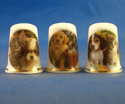 Fine Porcelain China Thimbles - Set Of Three Puppies And Kittens