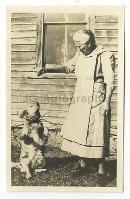 "20th Century Dogs - Vintage Vernacular ""Found"" Silver Print Photograph"