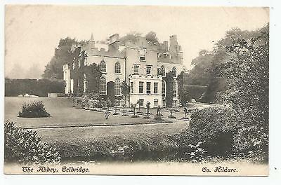 irish postcard ireland kildare celbridge abbey