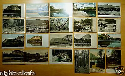 20 Antique Postcards ALL NORTH CONWAY, NH New Hampshire ALL UNDIVIDED BACK