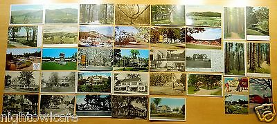 Big Lot of 35 Antique & Vintage Postcards ALL INTERVALE, NH New Hampshire 5 UDB