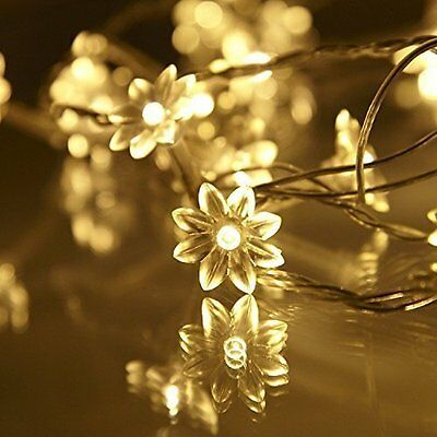 Battery Operated Warm White 30 Flower Petal LED Flowers Fairy String Lights Lamp