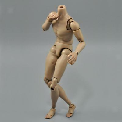 """Narrow Shoulder 1:6 Scale Male Body Hot Toys For TTM19 12"""" Action Figure"""