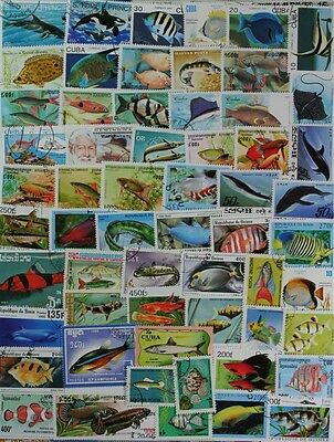 FISH & MARINE LIFE, FANTASTIC COLLECTION OF 100 DIFFERENT STAMPS (lot#DP)
