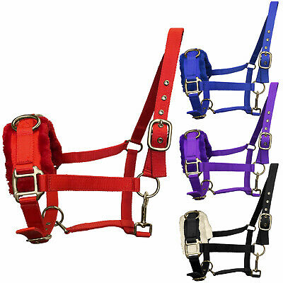 Nylon Lunging Lunge Cavesson Head Collar Cob Full Pony - All Sizes & Colours