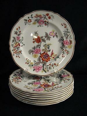 Spode Copelands China England Windermere Dinner Plates - Eight