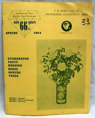C.r. Burr & Company Gardening Sales Catalog Of Roses Bushes & Trees 1964 Vintage