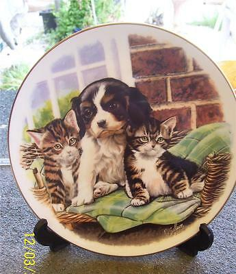 Pretty Royal Albert  'playful Friends' Cuddle Up Close Display Plate